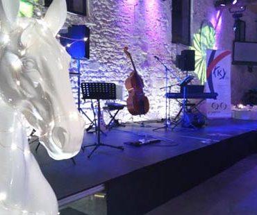 Musiciens soirée entreprise Montpellier Occitanie